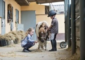 germany-nrw-korchenbroich-boy-and-girl-at-riding-stable-with-mini-shetland-pony-476876499-58483b803df78c02302d7d12